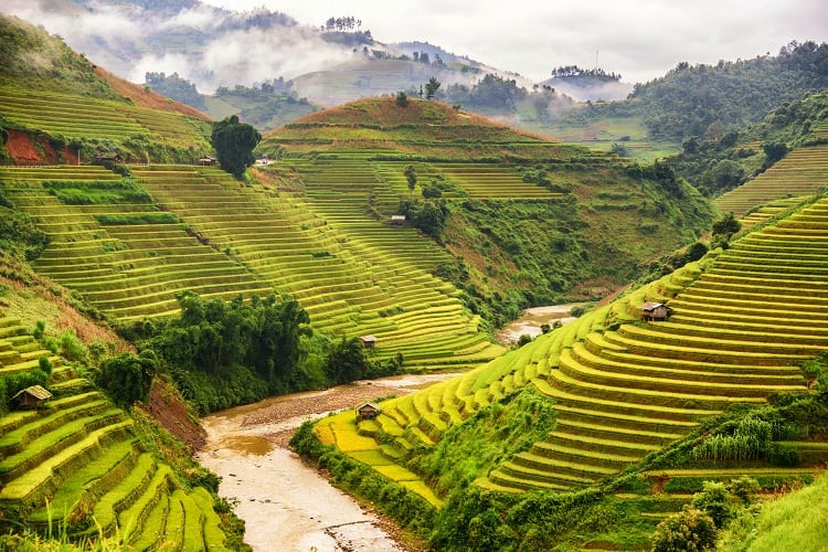 Mu Cang Chai - Best Places to Visit in Vietnam