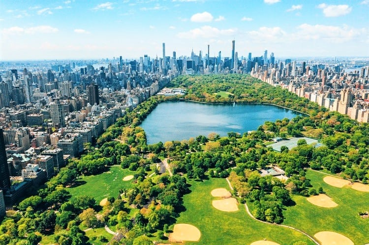 Top 4 Best Travel Destinations for Sports Fanatics - New York