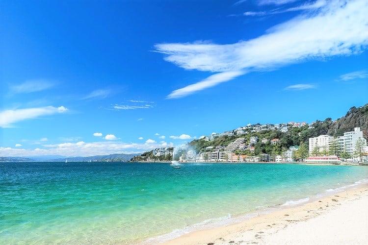 Oriental Bay Beach near Wellington