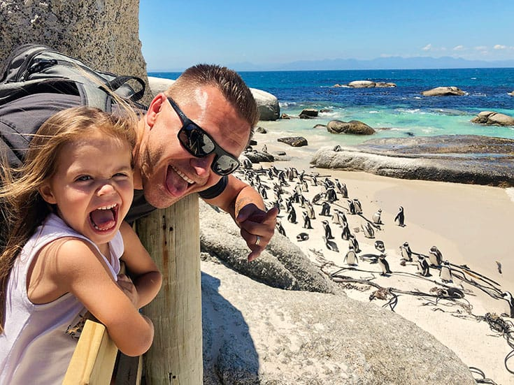 Boulders Beach Penguin Colony Cape Town