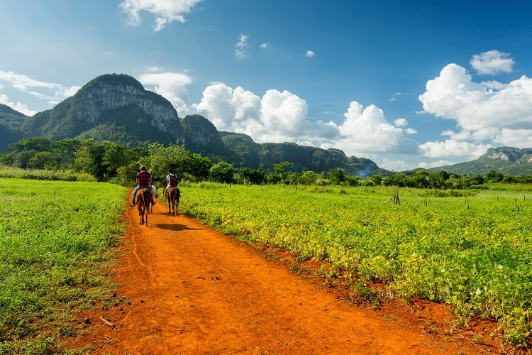 Vinales Cuba - Narure and Wildlife Tours in Central America