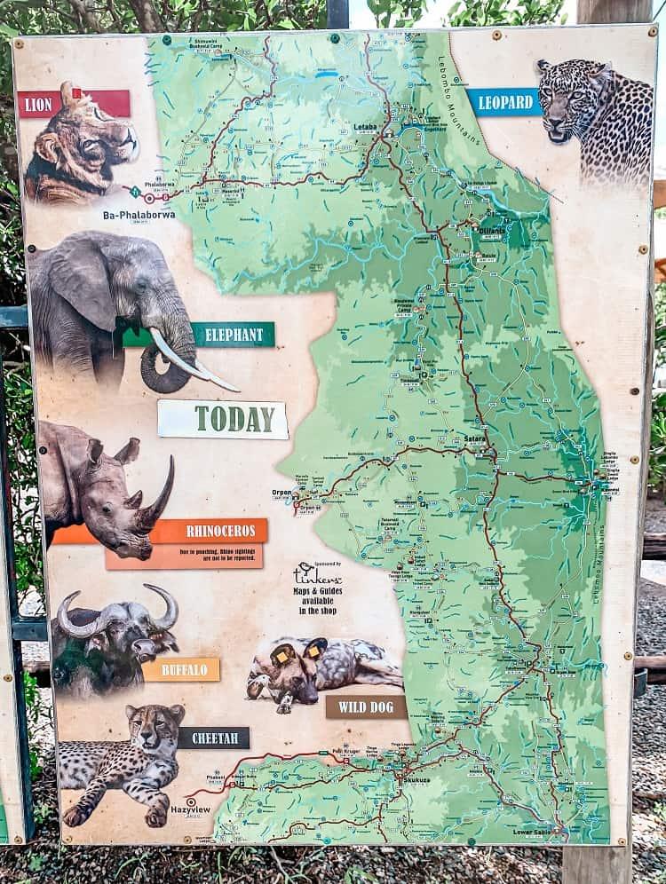 Kruger National Park Cost