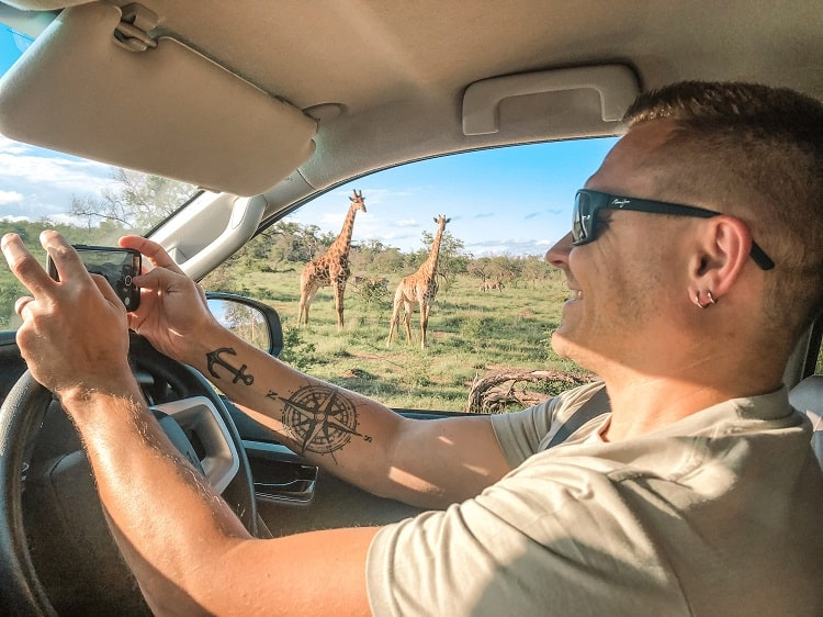 SELF-DRIVE SAFARI IN KRUGER NATIONAL PARK, SOUTH AFRICA (DETAILED GUIDE)