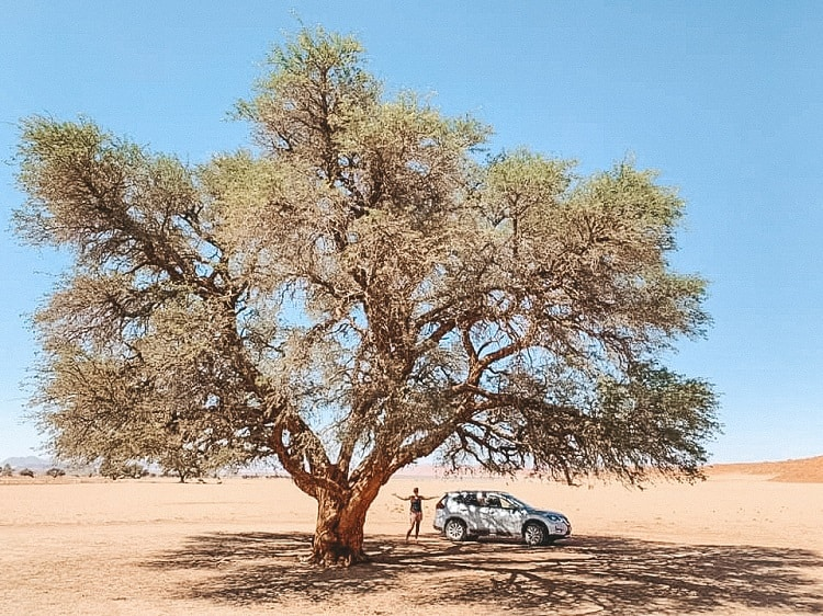 What to see in Sossusvlei with Kids