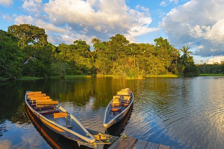 The Amazon, Yasuni National Park, Ecuador