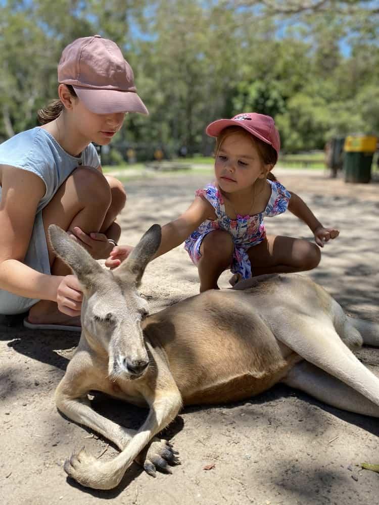 Currumbin Wildlife Sanctuary with Kids - Kangaroos